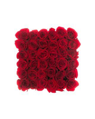 wal08w_tcutie medie patrata alba trandafiri rosii walrose