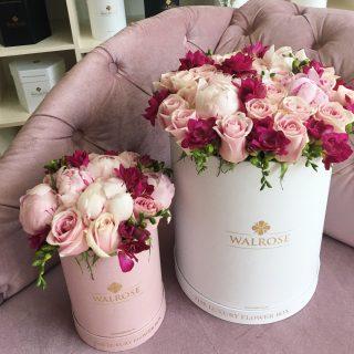 aranjament flori walrose frezii bujori trandafiri roz brasov romania