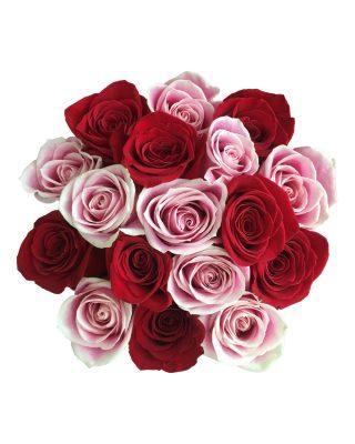 misti rose top walrose livrare flori brasov