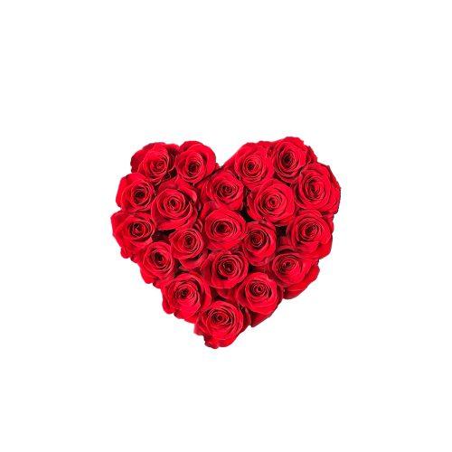 Cadou Valentine's Day Walrose cuti