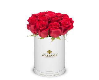 Cadou Valentine's Day Walrose cutie cu trandafiri idee de cadou cutie mica alba12
